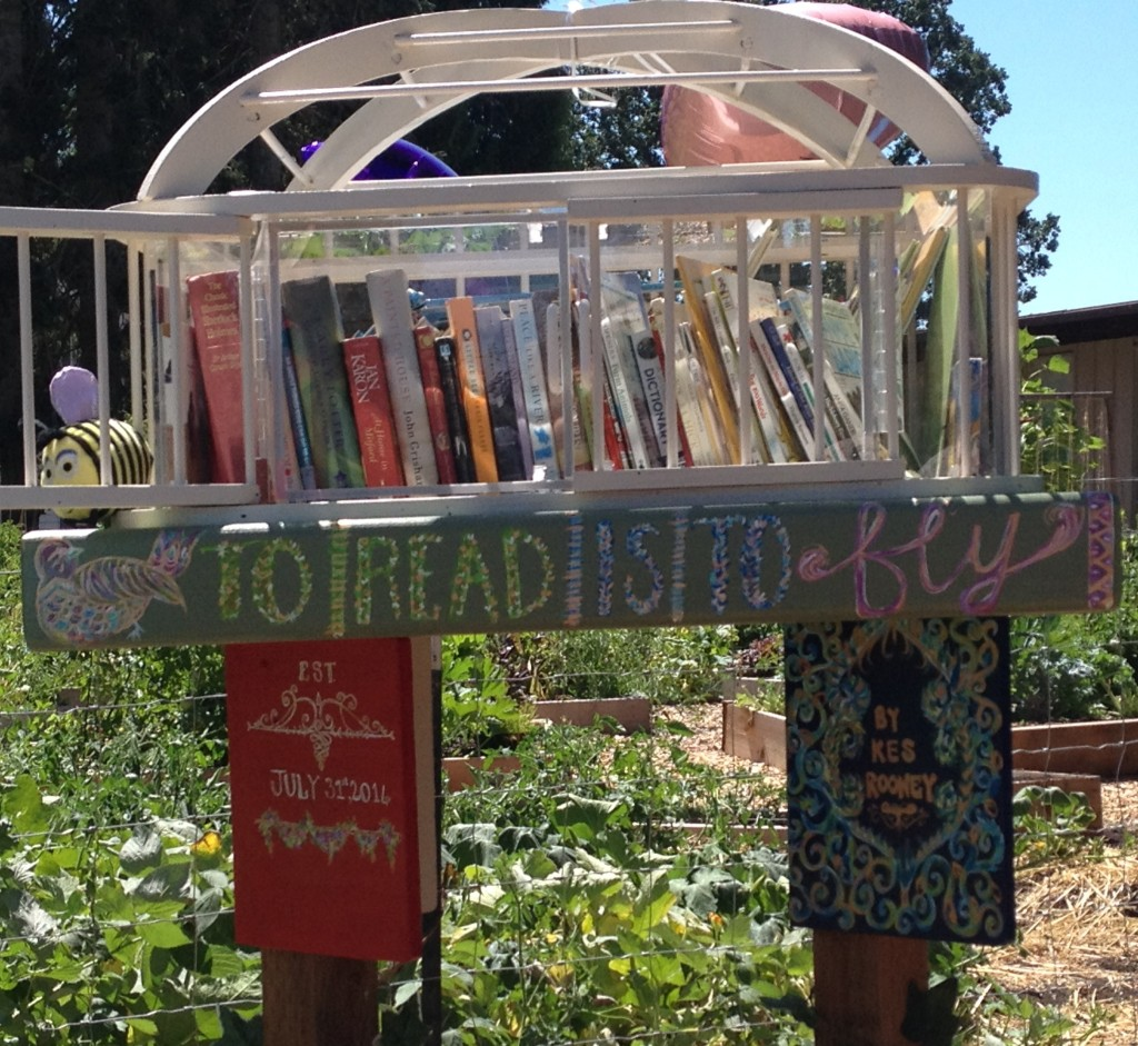 News from Our Little Free  Library!